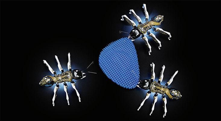 مورچه های رباتیک با هم همکاری می کنند