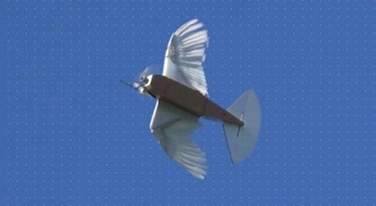 تولید ربات پرنده دقیق با استفاده از پرهای ۴۰ کبوتر