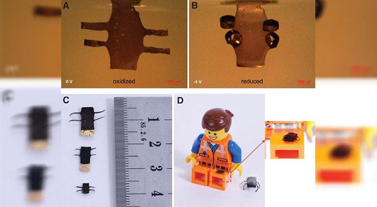چاپ ۴ بعدی رباتهای نرم در مقیاس میکرونی