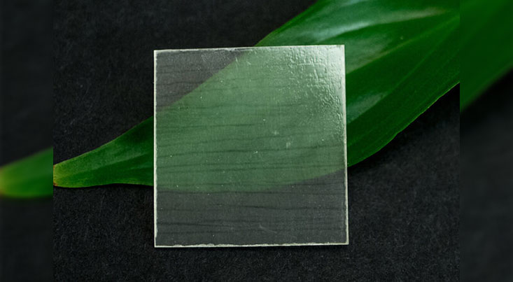 کاهش انتشار کربن با کمک شیشههایی که از چوب ساخته شدهاند