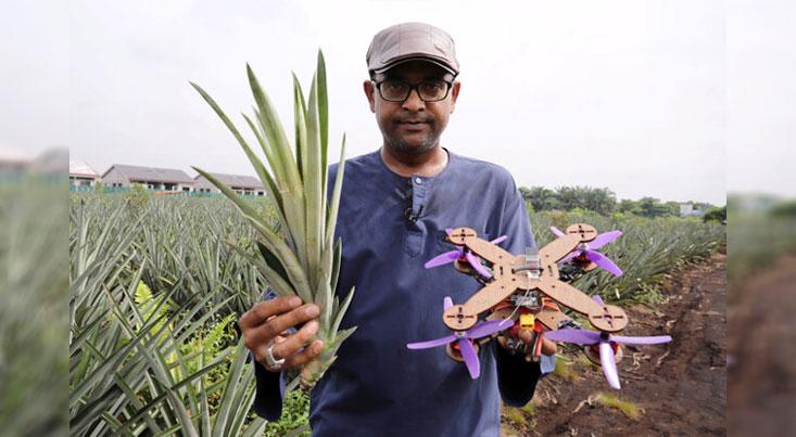 پهپادی از جنس برگهای آناناس تولید شد